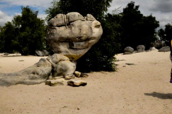 DinoKlein